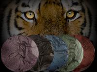 Tiger Eye Gele