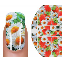 Emmi-Nail Fashion Tattoo N352